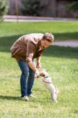 Selektivní zaměření vzrušeného muže hrající si s Jackem Russellem teriérem na trávu v parku