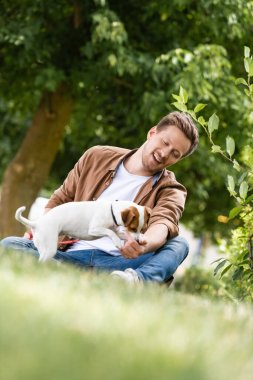 Selective focus of young man playing with jack russell terrier dog while sitting on green grass stock vector