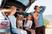 Selective focus of woman and child petting golden retriever in car trunk near father on beach