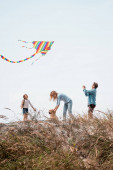 Selective focus of man holding kite near wife and daughter with golden retriever on grassy hill