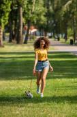Szelektív fókusz a fiatal nő séta és tartása kutya pórázon