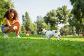 Selective focus of young woman woman playing and looking at dog