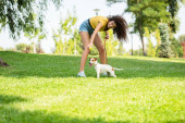 Selective focus of young woman with jack russell terrier dog on grass