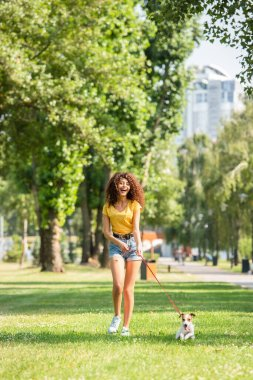 Selective focus of excited woman walking with jack russell terrier dog