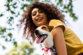 selektivní zaměření vzrušené, kudrnaté ženy drží jack russell teriér pes, nízký úhel pohledu