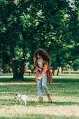 Selektivní zaměření ženy v pláštěnce chůze na vodítku jack Russell teriér na louce v parku