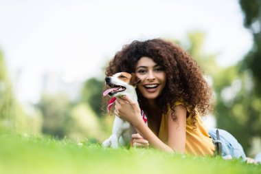 Surface level view of joyful, curly woman looking at camera while cuddling jack russell terrier dog on lawn stock vector