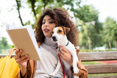 Brunette woman reading book and holding jack russell terrier dog on bench in park stock vector
