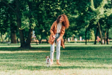Selective focus of curly woman in autumn outfit holding leash while strolling with jack russell terrier in park stock vector
