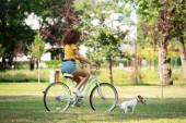 Selektivní zaměření mladé ženy drží jack Russell teriér na vodítku při jízdě na kole v parku