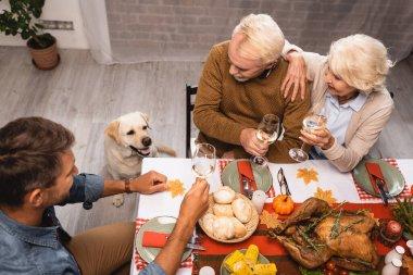 High angle view of golden retriever near family holding glasses of white wine during thanksgiving dinner stock vector