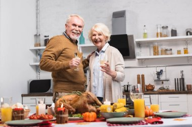 Selective focus of senior couple with glasses of wine looking at camera near turkey and candles on table stock vector