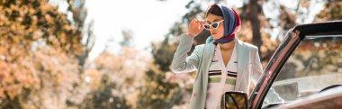 Arabanın yanında güneş gözlüğü tutan genç bir kadın, afiş.