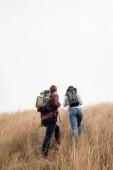 Rückansicht von Wanderern mit Rucksäcken auf einem grasbewachsenen Hügel mit Himmel im Hintergrund