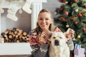 radostná šťastná žena ve svetru hraje s labrador v blízkosti vánočního stromečku