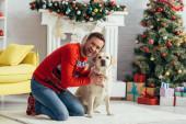 izgatott férfi pulóverben ölelés labrador közel díszített karácsonyfa