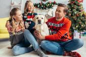 šťastná rodina ve svetrech při pohledu na labrador a zdobené vánoční stromeček