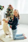 izgatott lány pulóver ölelés labrador és gazdaság jelen díszített nappali, karácsony koncepció