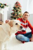 vidám férfi piros pulóverben ölelés labrador közel karácsonyfa elmosódott háttér