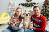 pleased couple in knitted sweaters hugging labrador in decorated apartment on christmas