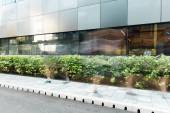 motion blur of people walking on urban street near modern building and green plants