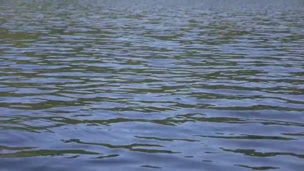 Water ripples in slow motion