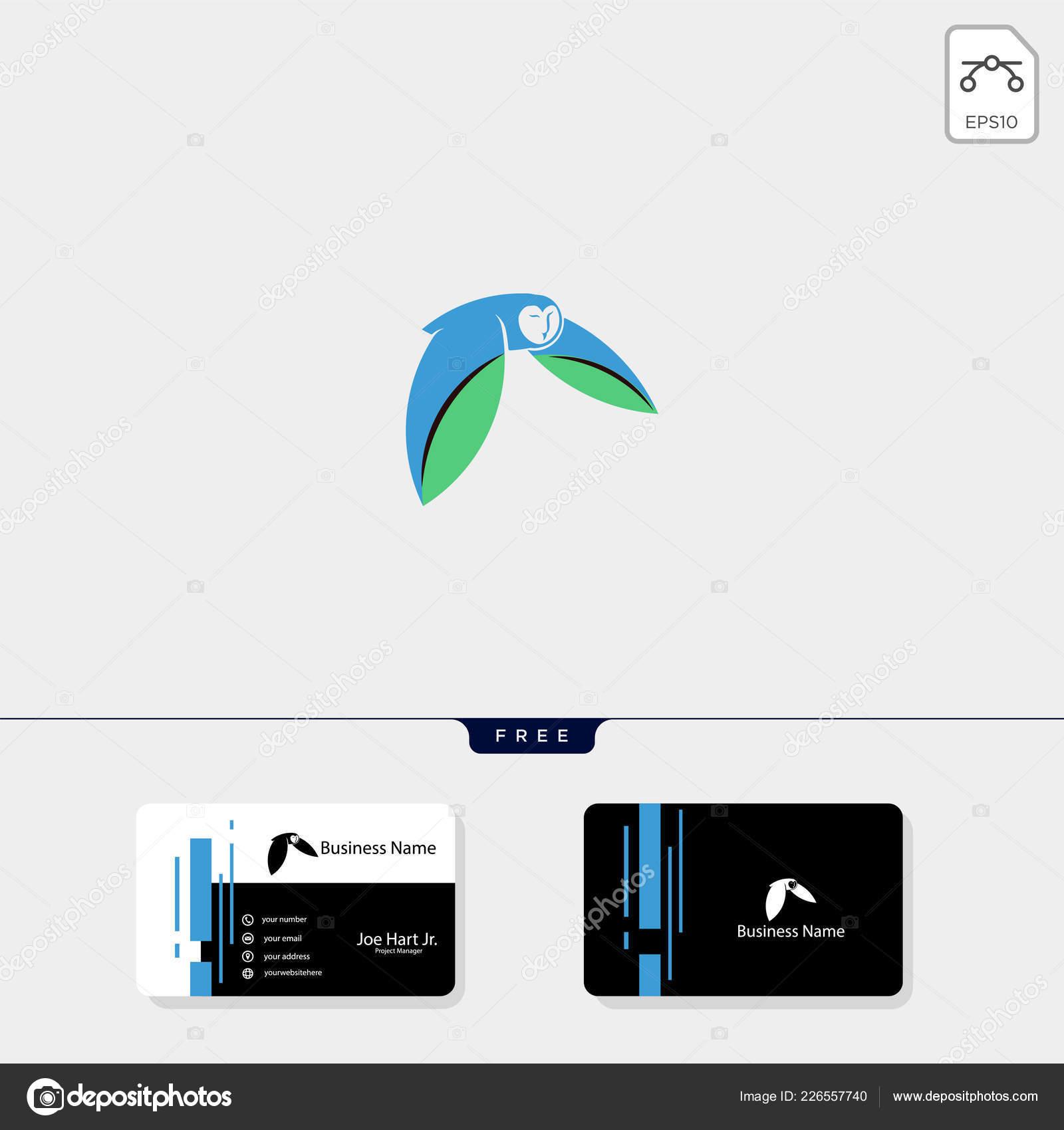 Vol Chouette Logo Modele Vector Illustration Carte Visite Gratuit Image Vectorielle