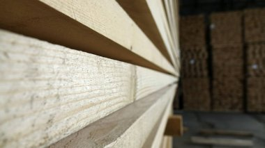 Plant for the production of wood boards. Pilorama. The concept of production, manufacturing and woodworking.