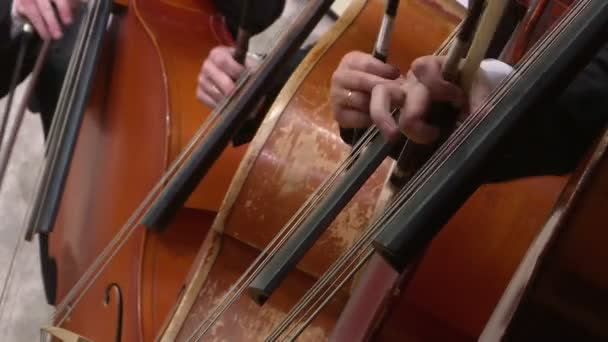 Symphonieorchester Cello spielt. Nahaufnahme.