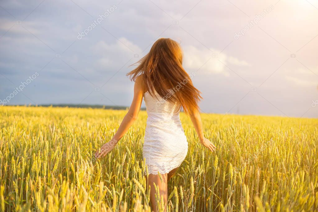 beautiful woman young walking in summer wheat field, back view