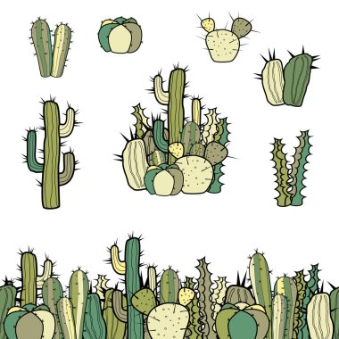 Set of several types of cacti, groups and a seamless border. Color vector illustration of isolated objects on a white background.