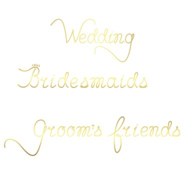 Bridesmaids, friends of the groom. Manual Lettering for wedding decor. Isolated vector illustration.