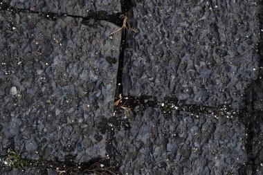 Close up surface of asphalt on a street