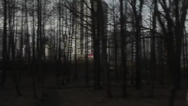 Výhled z okna pohybujících se osobních vlaků. Typická zimní zimní krajina se pohybuje mimo okno.