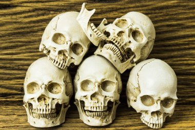 Genocides, Skull on wooden background / Still life style.