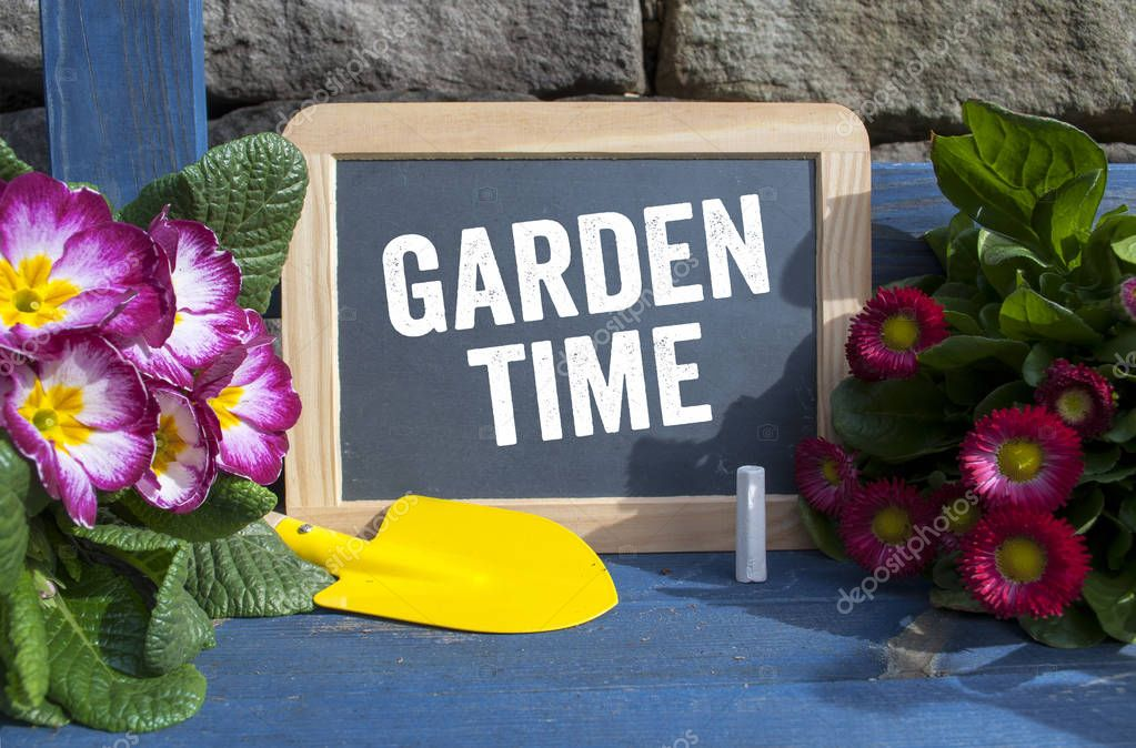 Chalkboard with plants and equipment with garden time