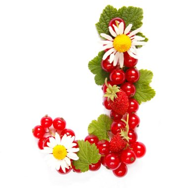 Letter J   English alphabet in the form of a pattern of red currant berries and white flowers and leaves on a white background