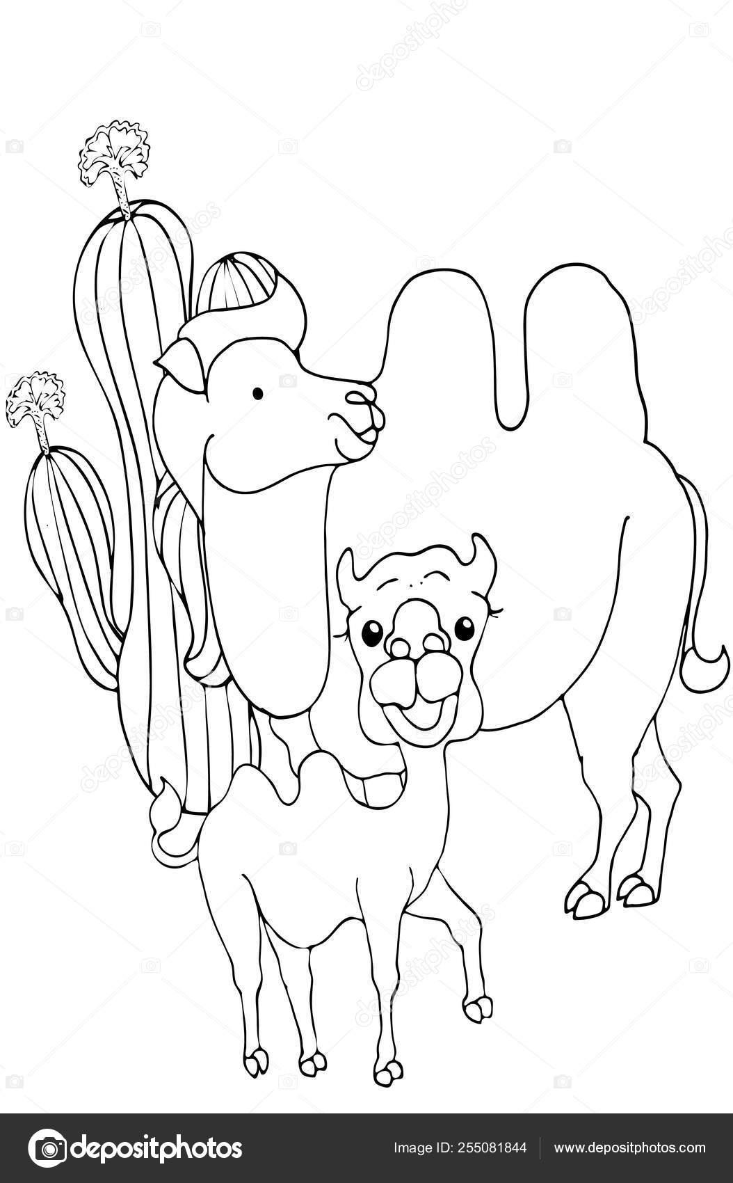 Boyama Sayfalari Hayvanlar Sevimli Deve Standlari Ve Gulumsuyor