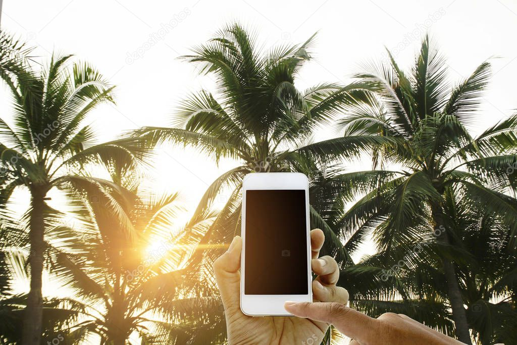 hand hold and touch screen smart phone on tropical palm trees on sky background