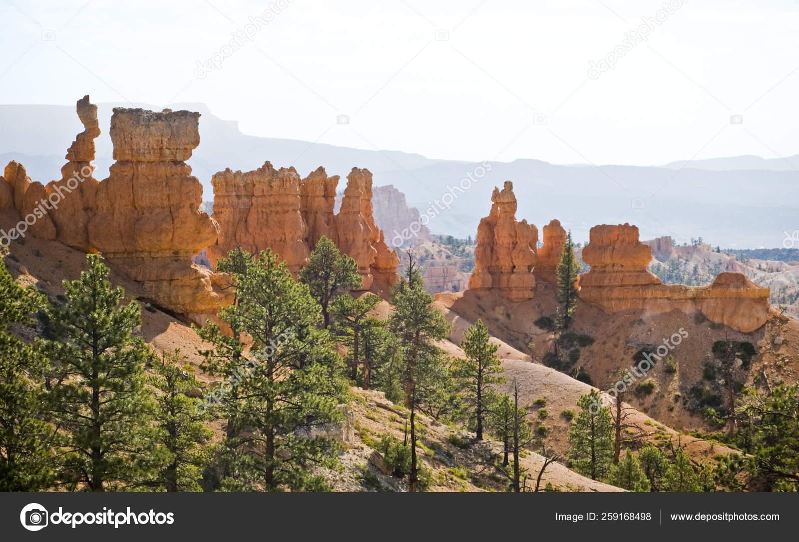 Tower Bridge Trail Bryce Canyon Utah Stock Photo C Yayimages 259168498