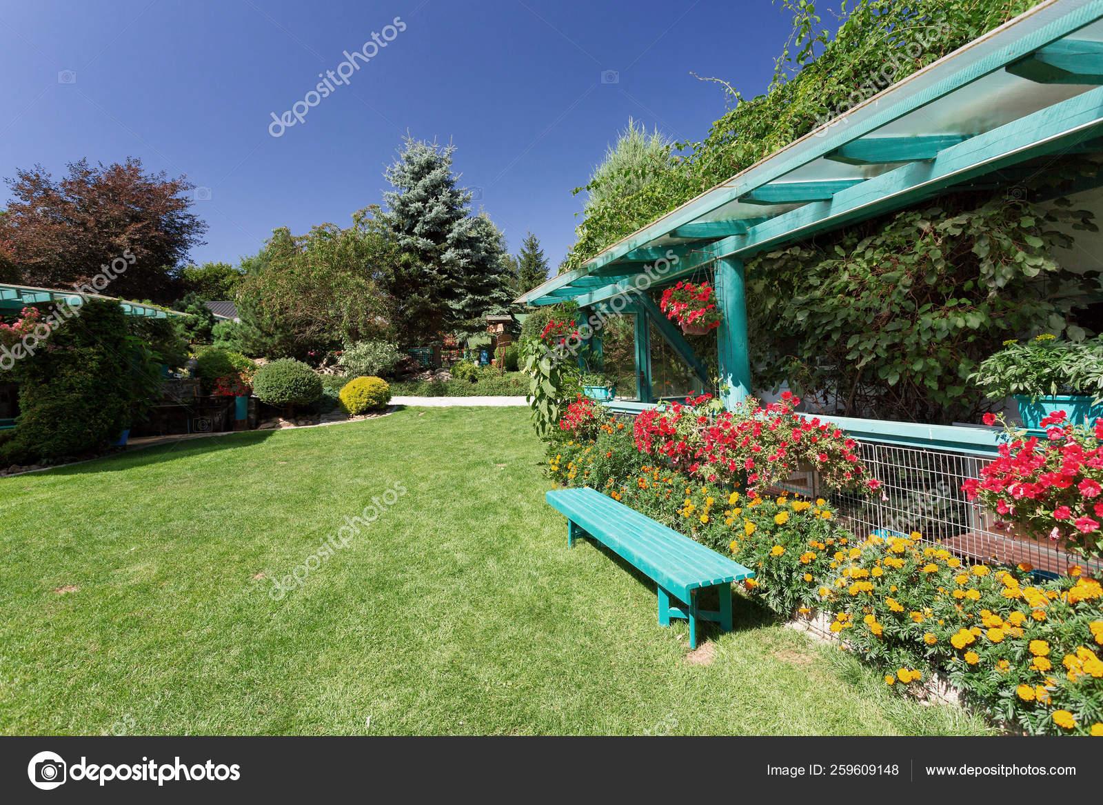 Beautiful Summer Garden Design Conifer Trees Green Grass Morning