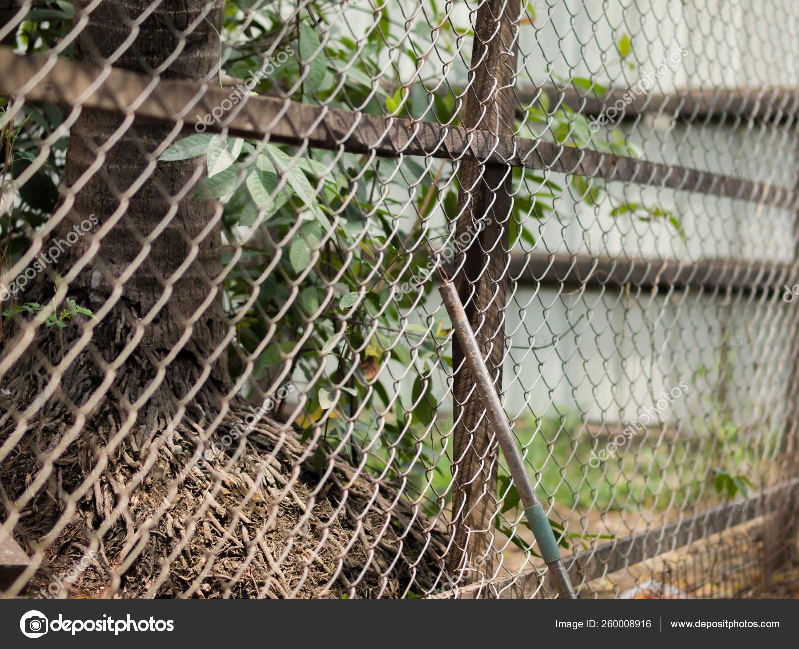 Color Photo Chain Link Fence Also Referred Wire Netting Wire Stock Photo C Yayimages 260008916