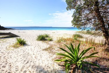 Beautiful unspoilt white sandy beach, Greenfields Beach, Jervis Bay, Australia