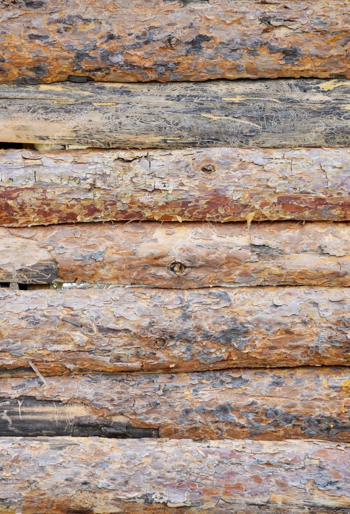 wooden background and graphic designs