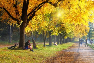 Autumn city park alley. Sporty man on bicycle at autumn day is resting under a tree. Sunny day, warm weather.