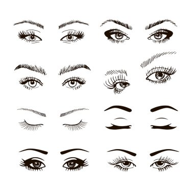 Set of different female eyes with long eyelashes, handdrawn vecor illustration stock vector