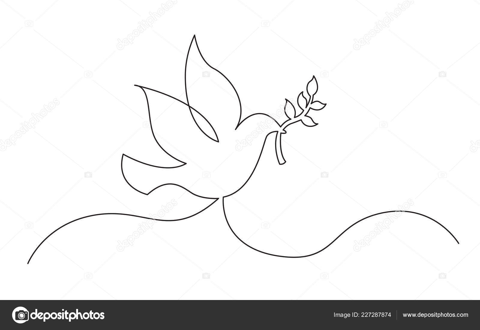 Drawing Of Dove With Olive Branch Continuous Line Concept Sketch Drawing Dove Olive Branch Peace Symbol Stock Vector C One Line Man 227287874