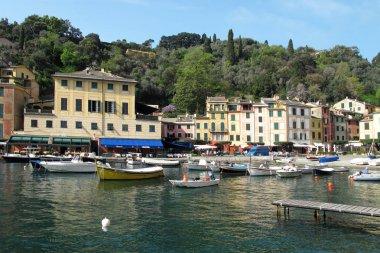 The town of Portofino, Italy.