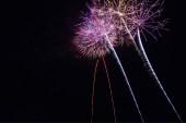 Fényes színes tűzijáték az éjszakai égbolton