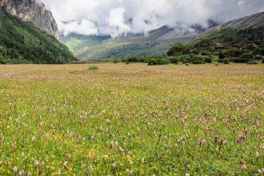 """Картина, постер, плакат, фотообои """"красивый горный пейзаж. концепция природы """", артикул 291635946"""